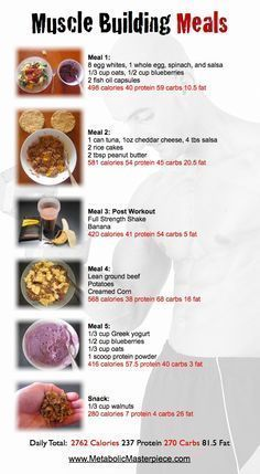 Trendy Weight Gain Plan For Women Meals Muscle Building Ideas - Weight Watchers Recipes - Nutrition Nutrition Crossfit, Nutrition Education, Nutrition Plans, Nutrition Guide, Nutrition Activities, Nutrition Quotes, Nutrition Poster, Nutrition Month, Proper Nutrition