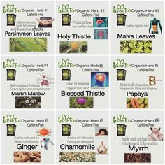 What our magical Iaso Tea contains. Lose 5lbs in 5 days. Www.totalifechanges.com/1923711