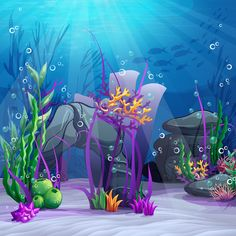 Cheap Background, Buy Directly from China Suppliers:Photography Backdrop underwater digital printed vinyl photo booth background newborns studio photo backdrop Underwater Cartoon, Underwater World, Jellyfish Decorations, Photo Booth Background, Coral Bedding, Muslin Backdrops, Custom Backdrops, Newborn Studio, Beach Print