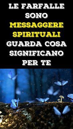 Le farfalle sono messaggere spirituali. Guarda cosa significano per te: