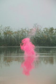 Pink Smoke Monster on a Lake -----Silence/Shapes 5 by Filippo Minelli Just In Case, Just For You, Me Quotes, Funny Quotes, Random Quotes, Doja Cat, Jolie Photo, Inspire Me, Make Me Smile