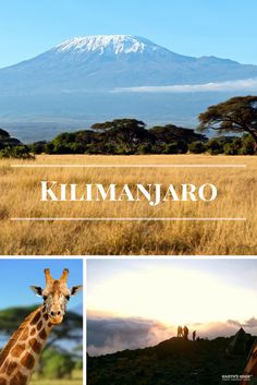 Just a small town girl on the roof of Africa! Small Group Tours, Small Groups, Adventure Travel Companies, Small Town Girl, Kilimanjaro, Small Towns, This Is Us, Africa, Earth
