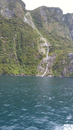 Milford Sound Jucy Cruise & Day Trip