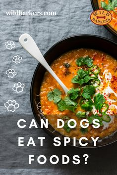 Can dogs eat spicy food? No, dogs should not eat spicy food. Spicy foods can cause a variety of problems for dogs. Spices can cause stomach issues like diarrhea, vomiting, and pain. The spiciness may also lead your dog to be extra thirsty, leading to other health issues like dehydration. In extreme cases, digesting spicy foods can be fatal to dogs. What should I do if my dog ate something spicy? First, check if there is anything toxic in the spicy food your dog ate.If there was something… Can Dogs Eat, Dog Eating, Spicy Recipes, Safe Food, Curry, Spices, Cases, Foods, Canning