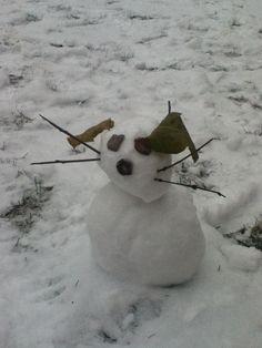 awww i saw this on my backyard :)