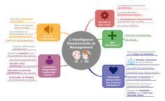 Nous vous proposons une Map sur l'Intelligence Emotionnelle et ses bénéfices en Management