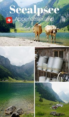 Reisen In Europa, Hidden Places, Travel Companies, Road Trippin, Blue Mountain, Alps, Travel Destinations, Hiking, Europe