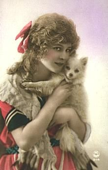 Vintage Photo Postcards of Dogs