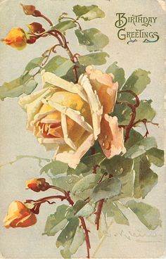 one large yellow rose open facing left, three yellow buds opening, two buds closed, stalks central