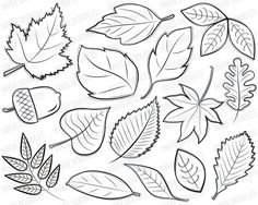 Autumn Leaves Digital Stamps Clipart black by InkeeDoodles, $4.50
