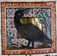 Medieval Bestiary : Crow Gallery
