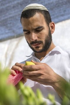 Sukkot 2015: The Welcoming, Glorious Jewish Feast Of The Tabernacle Explained