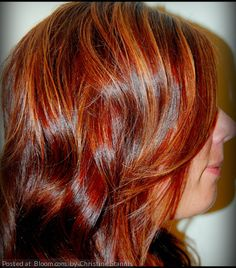 Paul Mitchell Dual Purpose - Highlights Redken Shades 6R & 6RB - Haircolor Redken Shades 7CB & 8WG & Clear - Toner