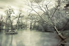 Nuit d'hiver {Explore]