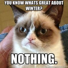 grumpy cat, you know what is great about winter, nothing