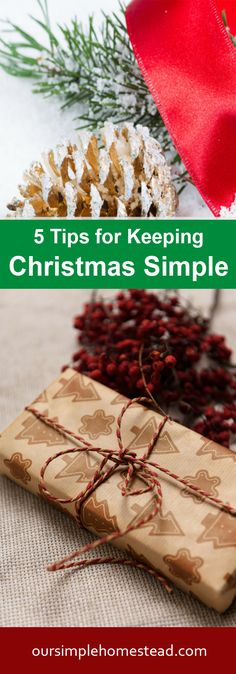 5 Tips for Keeping Christmas Simple - Long gone are the days of decking every hall in our home. A few simple decorations are all we need to remind us of this special time of year. A nativity scene, a poinsettia on the mantel and a very simple Charlie Brown tree decorated with pine cones, cranberries, and popcorn.