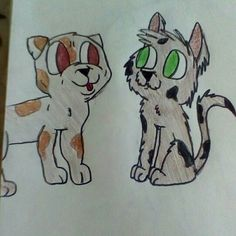 Fluffy cat and puppy bulldog by @heleavens request from @shanestreasure2