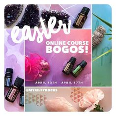 YASSSS! Our Blossoms United upline team is having a BOGO sale on our holistic wellness courses for public enrollment! ⭐️ . For any of you lovelies who are non-team members, you can choose one of the following: . 1 - Purchase the Vibrational Crystal Healing Certification Course ($350) and get the Holistic Tarot Reader Certification Course FREE! OR 2 - Purchase the Holistic Tarot Reader Certification Course ($180) and get the Journey to Healing & Self-Discovery Course FREE!  . These BO...