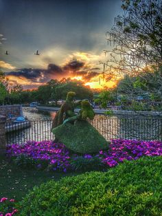 Hdr pics from annual passholder visits to Disney