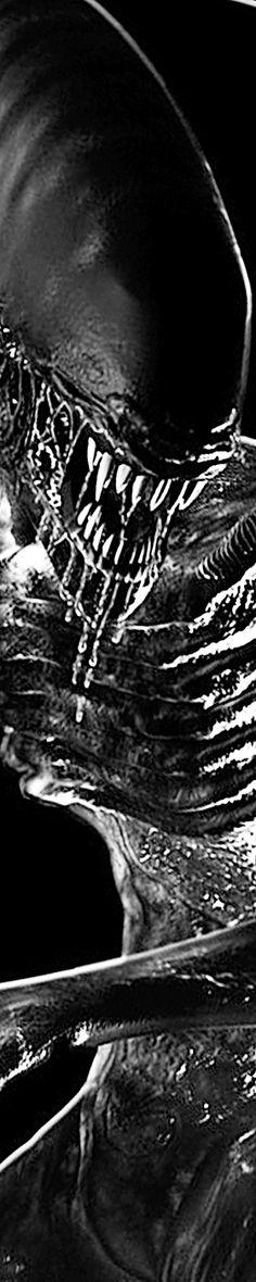 Alien Alien Pics, Alien Pictures, Alien Art, Dark Fantasy Art, Dark Art, Scary Movies, Horror Movies, Giger Alien, Predator Movie