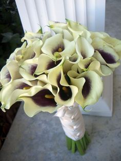 purple throat Calla lilies Calla Lillies, Calla Lily, Lilies, Picasso Flowers, Parisian Wedding, Beautiful Flowers, Our Wedding, Succulents, Bouquet