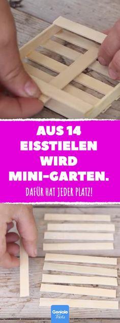 Aus 14 Eisstielen wird Mini-Garten. #DIY #garten #minigarten #upcycing #eisstiel #basteln #fettpflanzen #deko