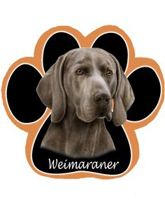 "Waggydogz Weimaraner Cushion 17x17/"" NEW"
