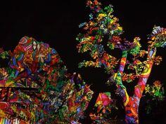 Fák, bokrok - fényfürdő - Night Projection fényfestés  Állatkertek éjszakája - Fővárosi Állat- és Növénykert  További fotók: https://www.facebook.com/media/set/?set=a.855007404510939.1073741890.216863264992026&type=1  #fák #bokrok #fényfürdő #nightprojection #fényfestés #raypainting #visuals #trees #bush #lightbath
