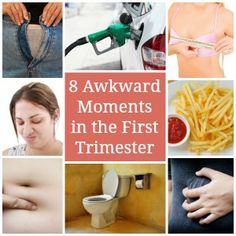 1000+ images about First Trimester of Pregnancy on ...