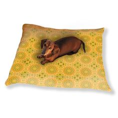Uneekee Pandora Floral Dog Pillow Luxury Dog / Cat Pet Bed