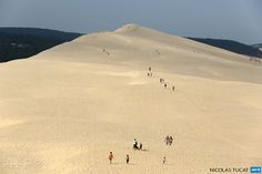 FRANCE, La Teste-de-Buch: People walk on top of the dune of Pilat, the highest sand dune in Europe, on July 16, 2013 at La Teste-de-Buch in the Arcachon bassin, western France. AFP PHOTO/ NICOLAS TUCAT
