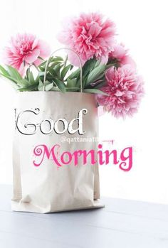 Latest good morning flower images and pic for brother, sister, friends and family. Share the morning greetings and make them Good Morning Sister, Good Morning Tuesday, Latest Good Morning, Good Morning Picture, Good Morning Flowers, Good Morning Good Night, Morning Pictures, Morning Wish, Good Morning Images
