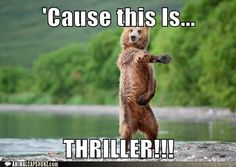 funny animals with captions | funny-animal-captions-cause-this-is-thriller