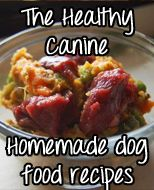 Homemade dog food is awesome!