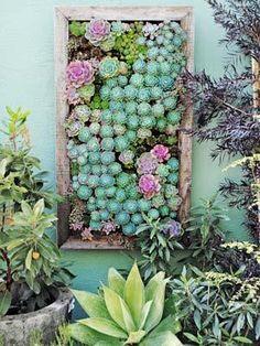 I love this succulent wall planter! Gardening Trends - New Ideas for Your Garden - Good Housekeeping Dream Garden, Garden Art, Garden Plants, Garden Design, Balcony Garden, Side Garden, House Plants, Moss Garden, Plant Design
