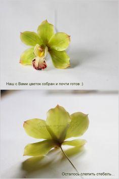 Орхидея Цимбидиум « Керамическая флористика. Цветы из холодного фарфора. Уроки и мастер-классы