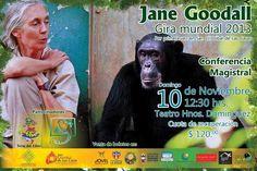 Jane Goodal elige San Cristóbal de las Casas como única ciudad en México para su gira mundial
