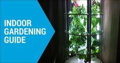 indoor garden equipment
