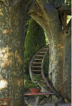 Spiral Staircase Treehouse, Provence, France garden architecture by Dominique Lafourcade France Photos, Stairway To Heaven, In The Tree, Stairways, Garden Landscaping, Landscaping Design, Outdoor Living, Beautiful Places, Beautiful Pictures