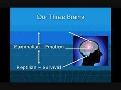 The Brain and Music Therapy