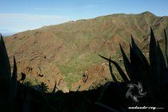Los Carrizales  #tenerife #landscapephotography #hikingtenerife #canarias #tenerifesenderos #senderismo #trekking #hiking #hike #sky #nature #outdoor