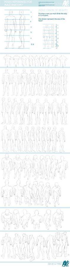 dibujo anatomia del cuerpo 6