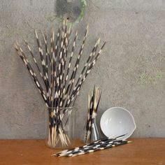Porcupine Quill Set Of 57 now featured on Fab.