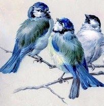 Bluebirds... @Rebecca Feldman .... I know I will have to wait sometime.... but could i have painting of birdies like these