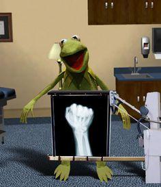 """Kermit  """"the inside story"""""""