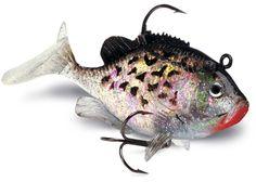 It's amazing how life-life swim baits are getting! Going Fishing, Fishing Lures, Spinner Bait, The Bait, It's Amazing, Hooks, 3 D, Swim, Lips