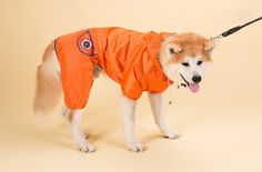 Woo Woo Pets Dog Waterproof Fabric Rain Jackets with Back Pouch for MediumandLarge Dogs Pet Raincoat Clothes -- See this awesome image  (This is an amazon affiliate link. I may earn commission from it)