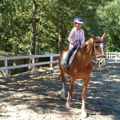 GABY  @laura.valle.ambrata  #horse #horses #kids #cavalli #toscana #summer #family