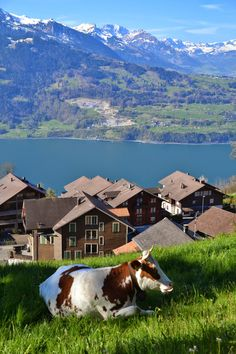 Beatenberg near Interlaken, Lake Thun, Switzerland
