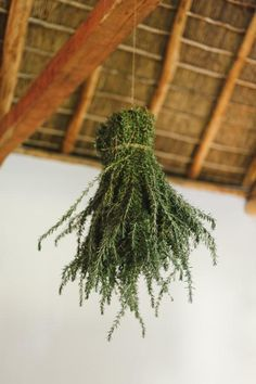 Larger bundles of herbs might be something to consider for the structures at the ceremony.